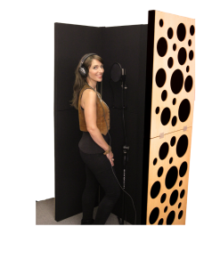 Vocal Booths and Gobos