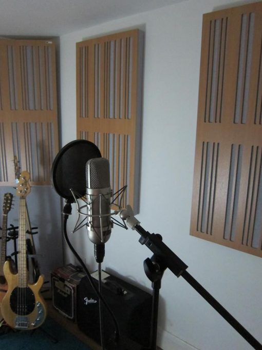 Alpha Panels 1D Wood Veneer in Studio with Microphone and instruments