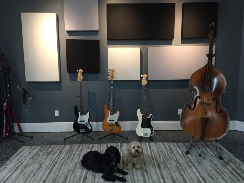 Eric Johnson Panels with Bass and Dogs